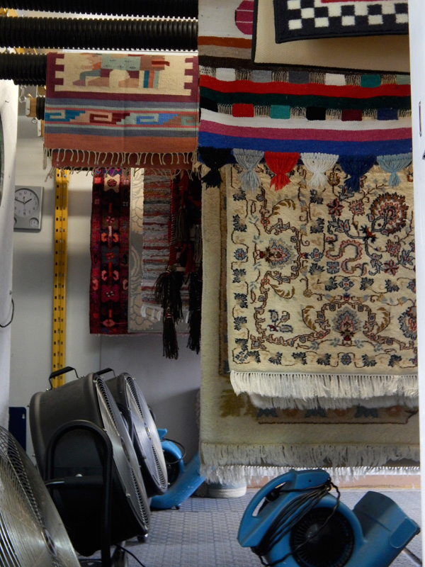 Ottawa Carpet Cleaning Dry Shop